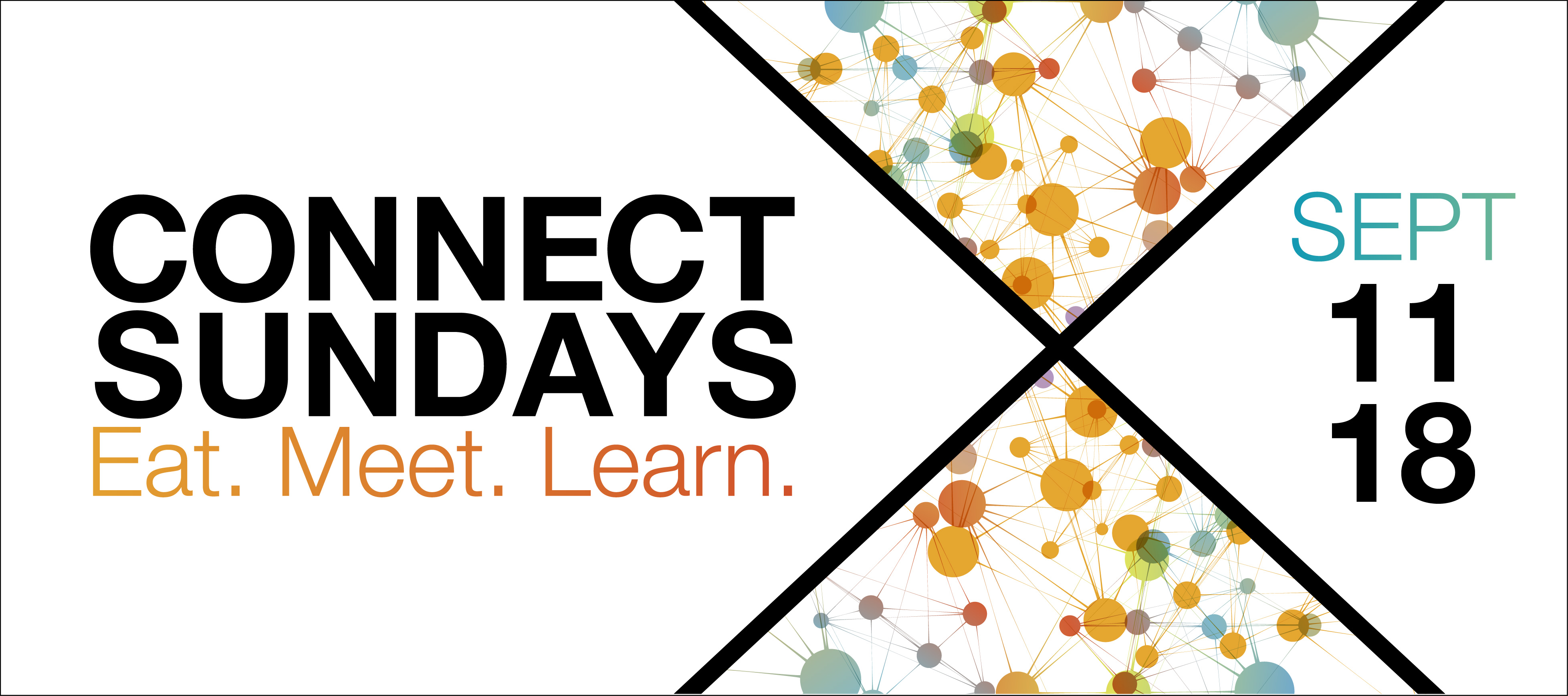 homepage | web banner | connect sundays september 2016
