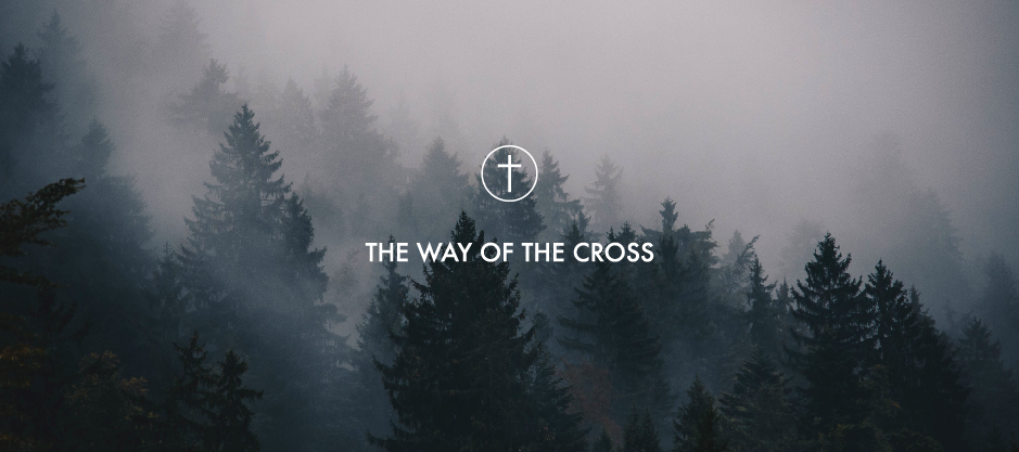 homepage | banner | the way of the cross
